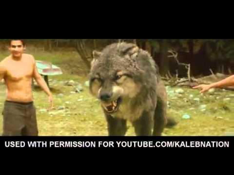 người biến thành sói