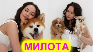 МИЛОТА Алина Загитова показала своих домашних питомцев