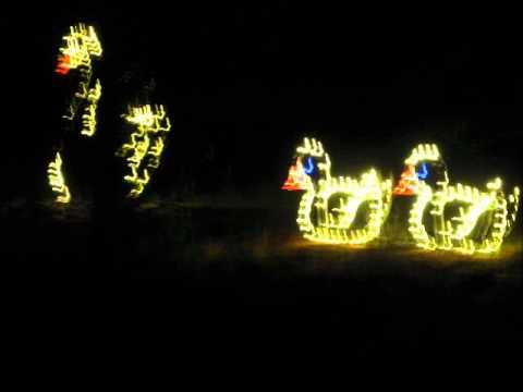 Hopeland Gardens Christmas Lights.Hopelands Gardens Xmas Lights 2011 Wmv
