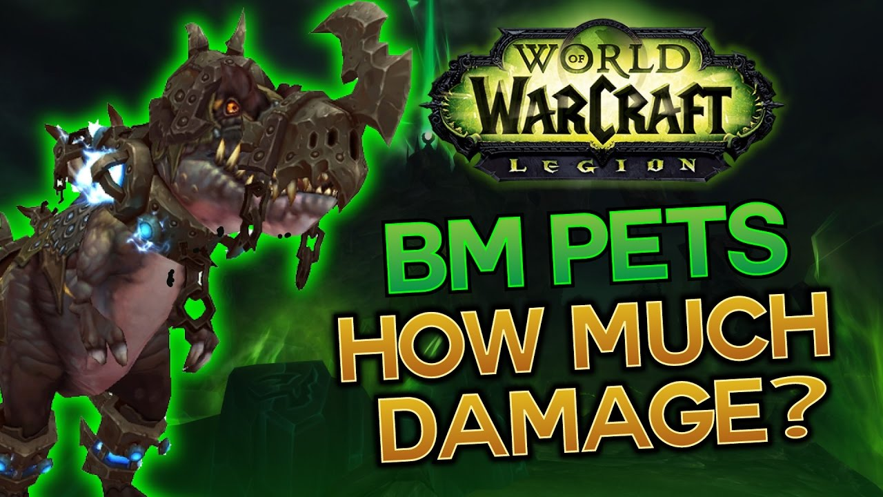 How Much Damage Can Bm Pets Do Dps Test Youtube