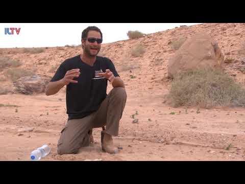 Cruising Israel - Mitzpe Ramon Crater