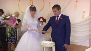 свадьба +в Чаплыгине.Андрей и Анастасия.ЗАГС 2017 год