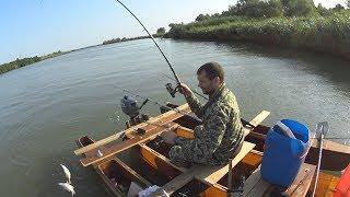Тарань, Темрюк, Кубань. Рыбалка с ночевкой.