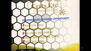 Electronic Incentives - Make Money Online From Home In Less Than 24 Hours