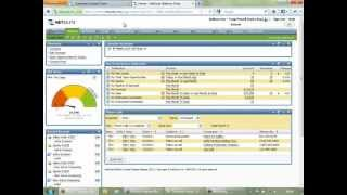 NetSuite Overview