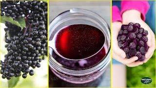 7 Scientific Health Benefits of Elderberry | Natural Medicine for Cold, Flu, Allergies & More