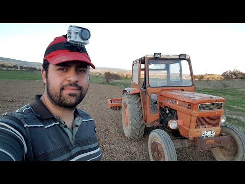 Makinesiz Yonca Ekimi Nasıl Yapılır? | Fiat 480 Ile Yoncaya Merdane çekimi | #vlog2