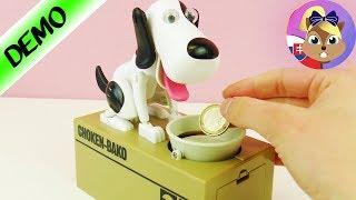 Pokladnička pes | Pohyblivá pokladnička | NAJCOOLOVEJŠIA POKLADNIČKA NA SVETE! Odteraz sporíme!