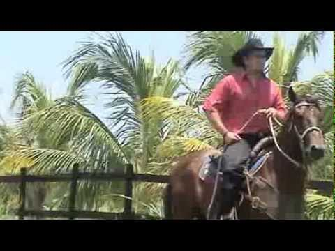 Caballo de coleo Eduard Mendoza