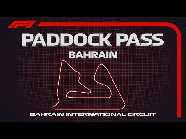 F1 2019 (видео)