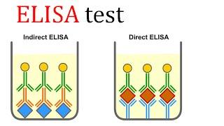 ELISA test