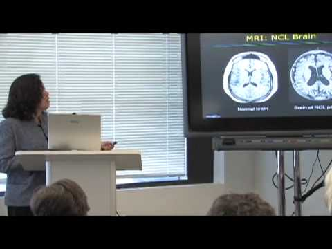 Getting Stem Cell Therapies Approved: Ann Tsukamoto - CIRM Science Writer's Seminar