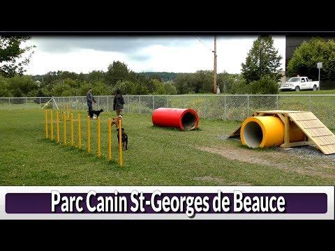 Parc canin St Georges Beauce(Hier@Aujourd`hui)