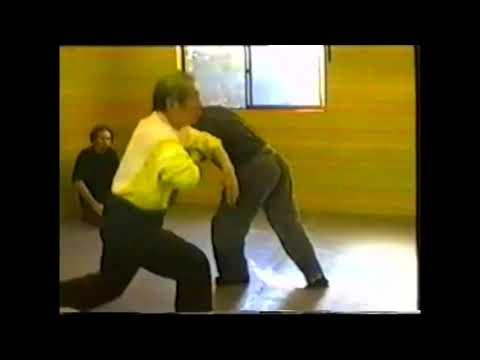 Masaaki Hatsumi Stick Fighting Ebook Download