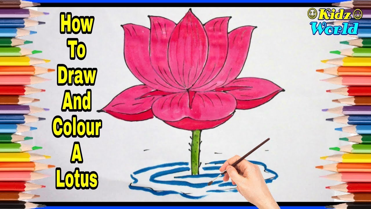 Learning Colors For Kids By Drawing Lotus Coloring Pages Drawing For Kids Learn To Colors Youtube