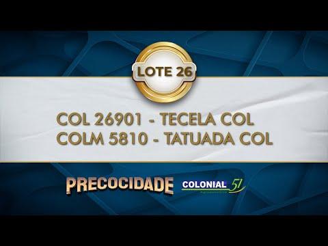 LOTE 26   COL 26901, COLM 5810