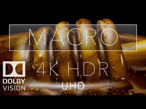 Macro HDR 4K 60fps Dolby Vision | Laowa 24mm Probe Lens