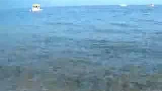 Soundscape of Lake Shikotsu
