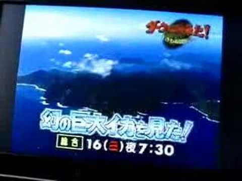 TV Channel Surfing - Tokyo, Japan.