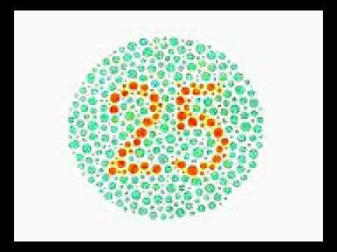 Ujian Warna Untuk Mata Anda Youtube