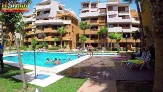 Недвижимость в Испании, Торревьеха, квартира в Пунта Прима у моря, пляжа(Недвижимость в Испании, Торревьеха, квартира в Пунта Прима у моря, пляжа Цена - http://espana-live.com/kvartira-punta-prima-36908.html..., 2016-08-29T11:23:26.000Z)
