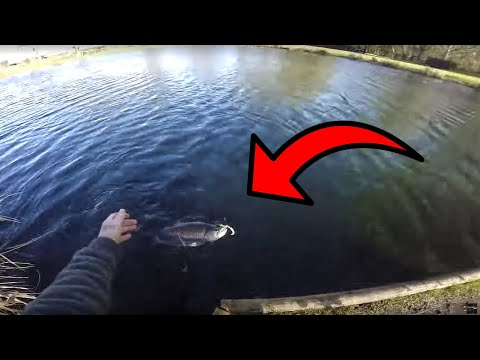 What Huge Fish Live In This Lake? Secrets Revealed!