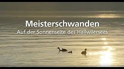 Imagefilm Gemeinde Meisterschwanden