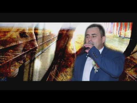 SORINEL DE LA PLOPENI -O batrana intr-o gara Cover