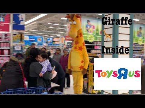 Giraffe 🦒 In Toys R Us Store (#Giraffe) (#toysrus)