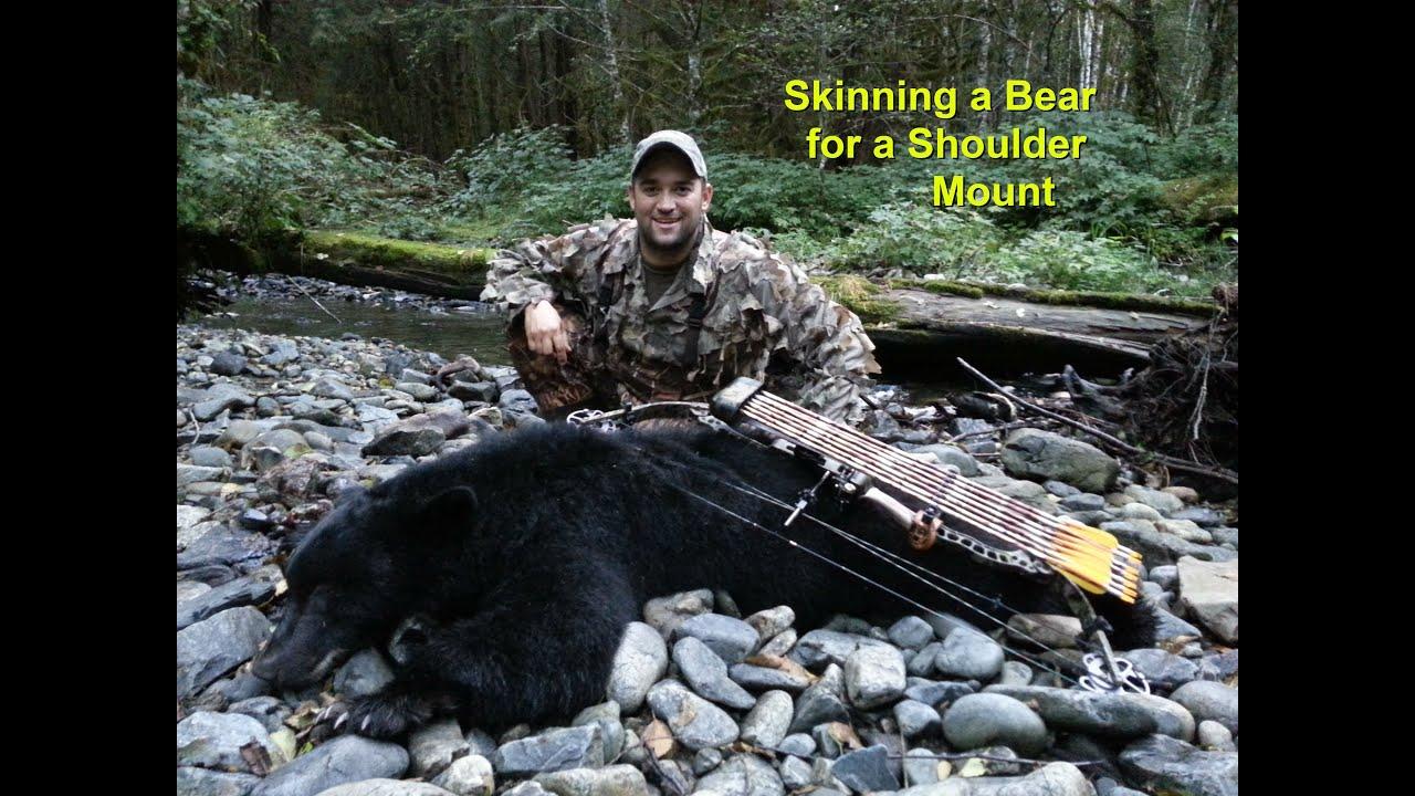 Skinning a bear for shoulder mount