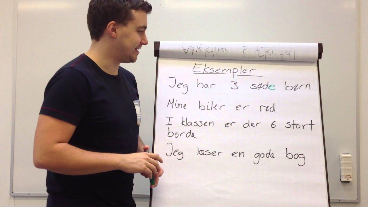 8. Substantiver i flertal og adjektiver