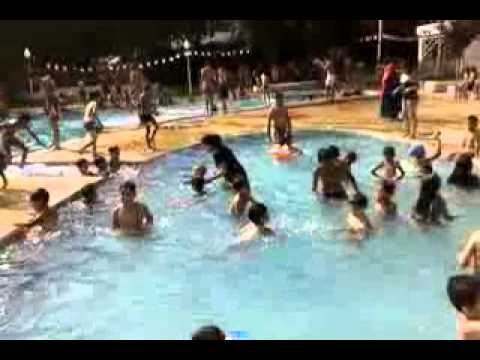 Piscine alger mouflon d 39 or youtube for Piscine algerie