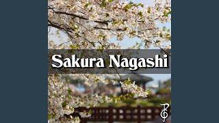Sakura Nagashi (From