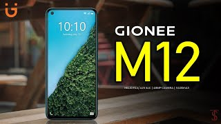 Gionee M12 Price, Official Look, Design, Camera, Specifications, 6GB RAM, Features
