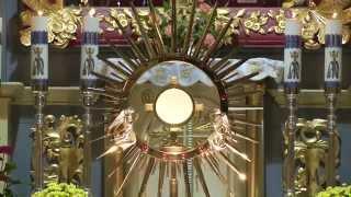 Obory. Adoracja Najświętszego Sakramentu i Modlitwa Różańcowa do Matki Bożej Bolesnej Oborskiej.