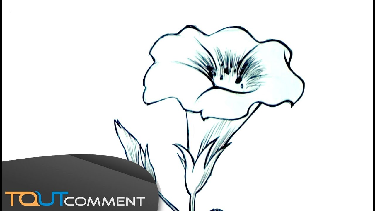 Top Dessiner une fleur facilement - YouTube XX57