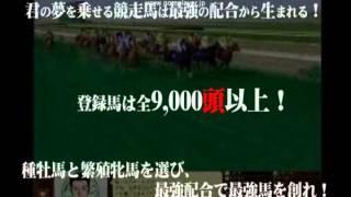 オンライン競走馬育成シミュレーション【競馬伝説Live!】