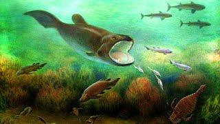 Происхождение и эволюция рыб (рассказывает палеонтолог Ярослав Попов, подборка)