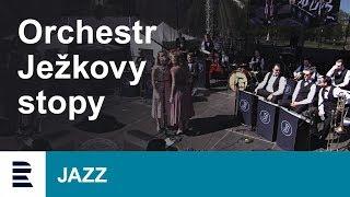 Orchestr Ježkovy stopy | Mezinárodní den Jazzu | International Jazz Day 2018