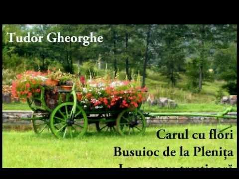 Tudor Gheorghe - Carul cu flori, Busuioc de la Plenița, La casa cu trestioară