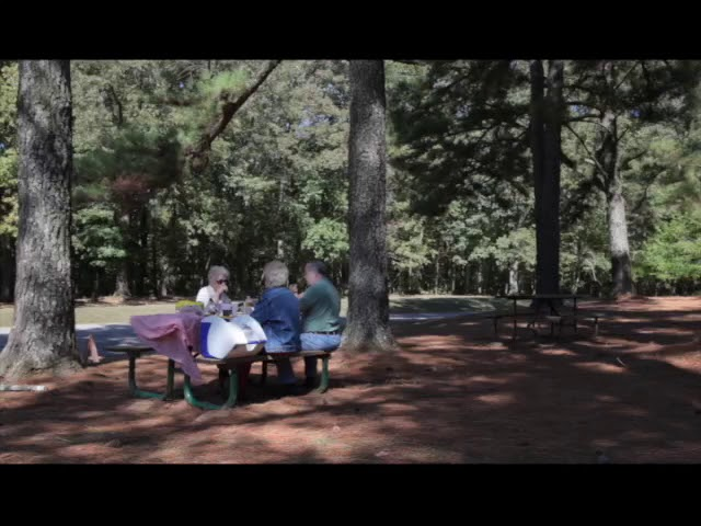 The Great Outdoors: Natchez Trace Parkway