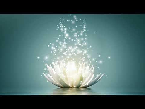 Чистый свет любви Цветка души