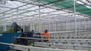 Bio Chopper Compact shredding tomatoes and synthetic twine in tomato nursery crop rotation