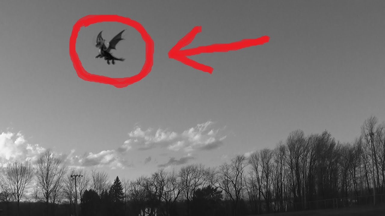 Dragon Caught on Tape (Are Dragons Real??) - YouTube