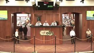 OBS April 2019 Two-Year Olds in Training Sale, Day 1