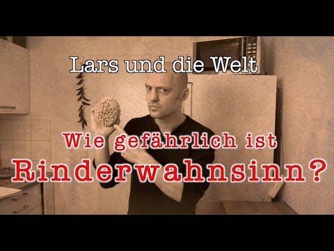 Lars Und Die Welt