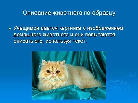 Описание животного Русский язык 5 класс Развитие речи Русский язык