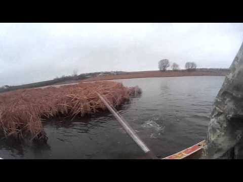 Снимаем сети на коропа ячея 90, 200 метров, Флюорокарбон fishing with nets.