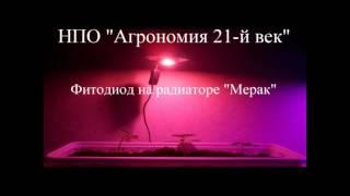 Мощный 10Вт фитодиод на радиаторе LED grow light