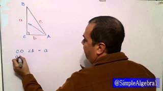 Catetos e Hipotenusa en triángulo rectángulo - SimpleAlgebra1